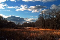 Hickory Run, State Park, Sky View